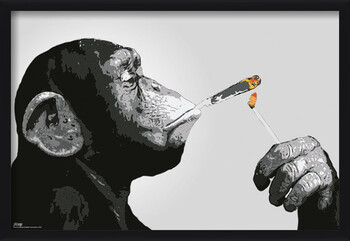 Framed Poster Steez - Monkey Smoking