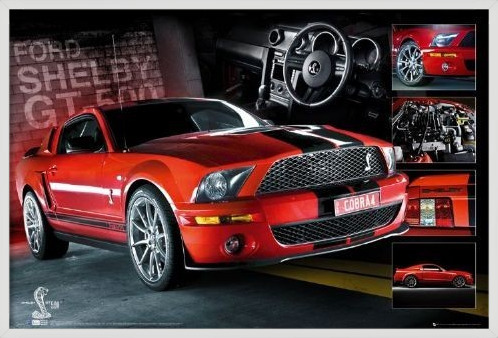 Red Mustang Poster