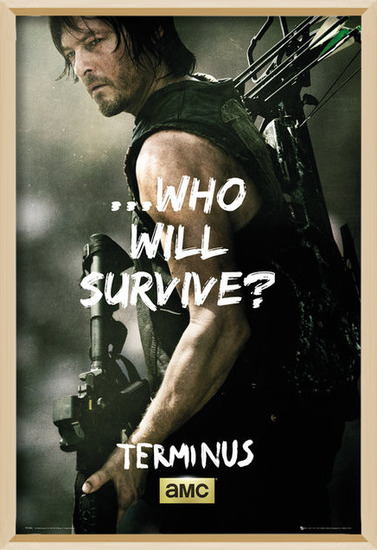 The Walking Dead - Daryl Survive Poster
