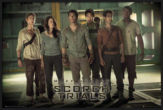 Maze Runner 2 - Group 2 Poster