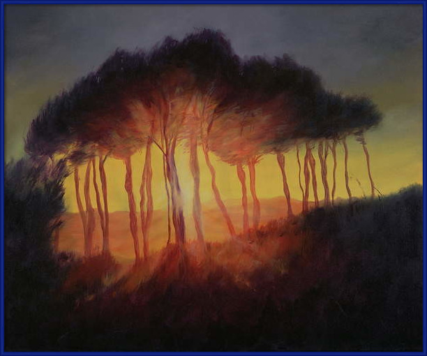 Fine Art Print  Wild Trees at Sunset, 2002