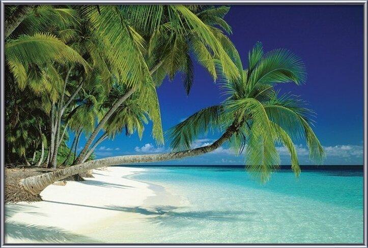 Maledives Poster