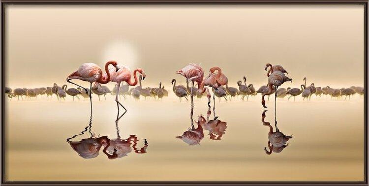 Art Print on Demand Flamingos Ii