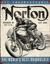 NORTON - winner