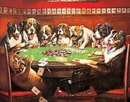 DRUKEN DOGS PLAYING CARDS